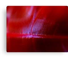 """""""Natural Red"""" Canvas Print"""