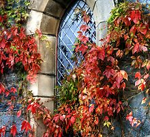 Loch Achray church window by Linda  Morrison