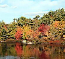 Autumn Pond Scene by HALIFAXPHOTO