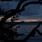 Night Falls Upon Us by Jennifer Ellison