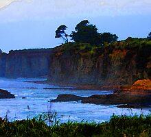 Cape Foulwind by Helen Simpson
