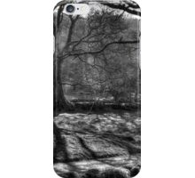 Glendalough iPhone Case/Skin