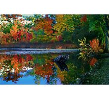 Many colors of New England Photographic Print