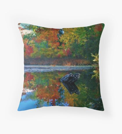 Many colors of New England Throw Pillow
