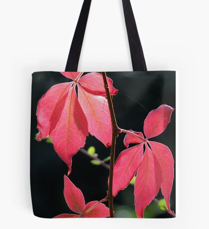 Autumn Light too Tote Bag