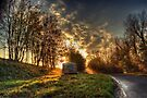 End of the Road by Nigel Bangert