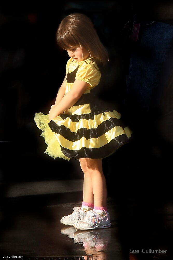 Bumblebee by Sue  Cullumber