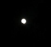 Full Moon - October 13th, 2008 by Susan Isabella  Sheehan