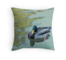Mallard Swim time Throw Pillow