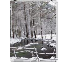 A Winter Wonderland Pond iPad Case/Skin
