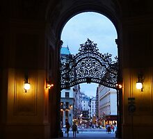 Welcome to Vienna by Kelly Carmody