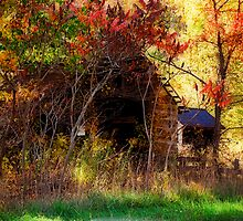 Posted - No Trespassing by Lois  Bryan
