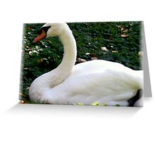 Yes, Zoe ... It's a Swan!! Greeting Card