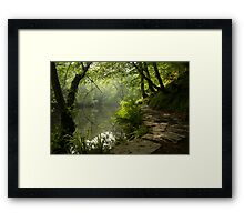 A Light unto my path Framed Print