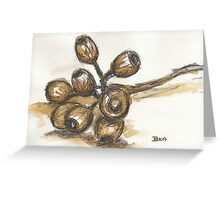 Scribbly Gumnuts Greeting Card