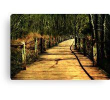 The Path Less Taken Canvas Print
