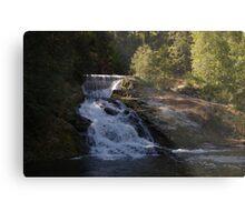 double water falls in washington Metal Print