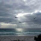 Moody Denison Beach by Asoka