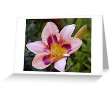 Lily in the Leaves.. Greeting Card
