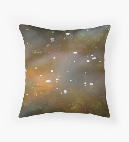 Light and Water Throw Pillow