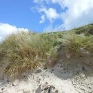 Over the Top - Hebridean Beach Scene by MidnightMelody