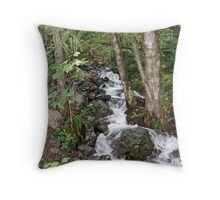 """Cascading Water"" Throw Pillow"