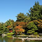 AUTUMN IS AT THE SEATTLE JAPANESE GARDEN by MsLiz