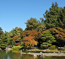 AUTUMN IS AT THE SEATTLE JAPANESE GARDEN by MsLiz