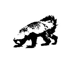 Honey Badger (black) Photographic Print