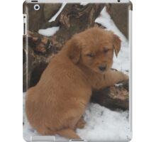 Sully-  Did you Call?  iPad Case/Skin