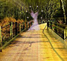 Enchantress by Scott Mitchell