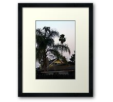 FROM MY BACK YARD Framed Print