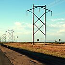 power lines by ria hills