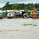 Houseboats in Manaus by Maggie Hegarty