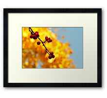 Autumn Berry I Framed Print