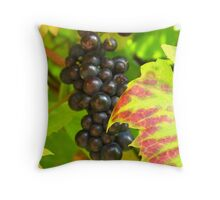Harvest time gift Throw Pillow