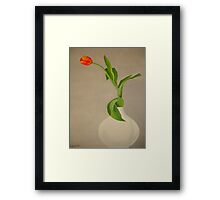 Red Tulip - Lâle Framed Print
