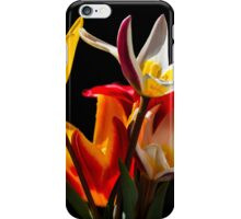 Tulip flowers against black background iPhone Case/Skin