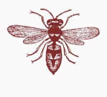 Red Wasp by Zehda