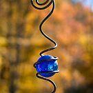 Fall Jeweled Light by Dan Cahill