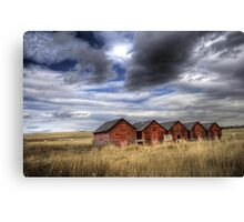 Five Red Barns Canvas Print