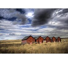 Five Red Barns Photographic Print