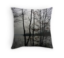 lifting fog over ice Throw Pillow