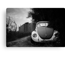 hidden in bushes Canvas Print