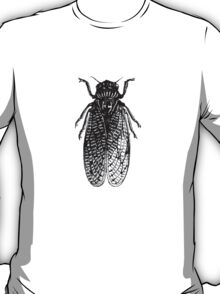 Cicada Bug T-Shirt
