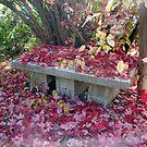 Fall Inspiration by tkrosevear