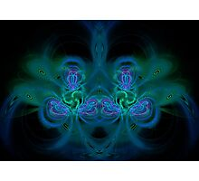 Fractal 13 Photographic Print