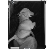 Sister's iPad Case/Skin