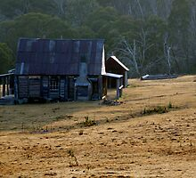 Coolamine Homestead by pslambe
