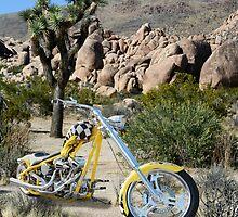 Desert Chopper by Paul Michelson